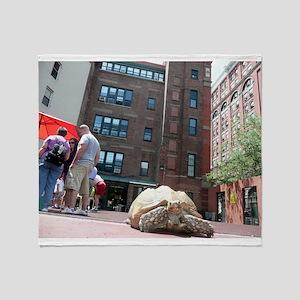 Sulcata Tortoise on the Loose Throw Blanket