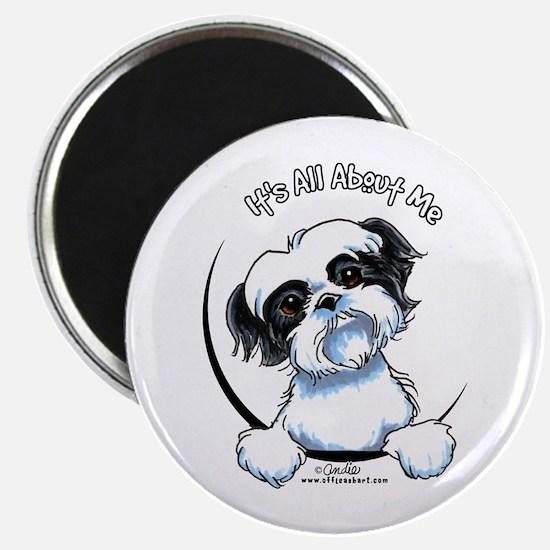 "B/W Shih Tzu IAAM 2.25"" Magnet (10 pack)"