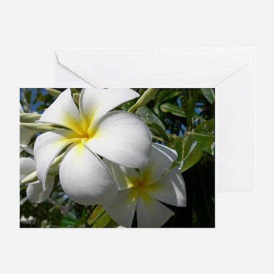 Tiare Flowers Greeting Cards (Pk of 10)