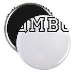 QMBC Magnet