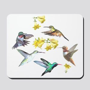 HUMMINGBIRDS AND TRUMPET PLANT Mousepad