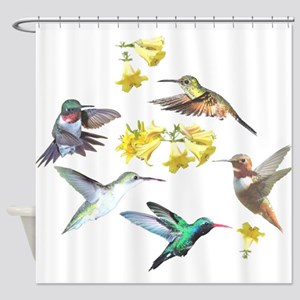 HUMMINGBIRDS AND TRUMPET PLANT Shower Curtain