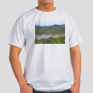 Panorama 2 Ash Grey T-Shirt