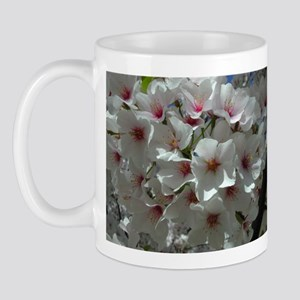 Cherry Blossoms 1 Mug