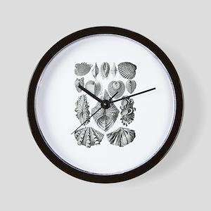 Shell Fossils Wall Clock