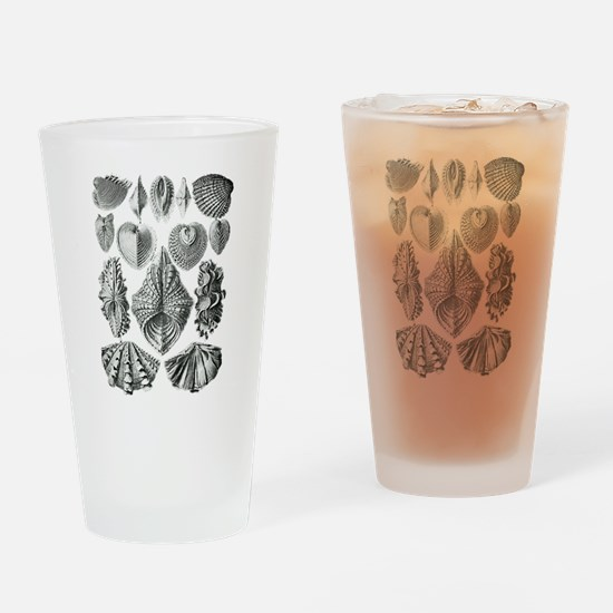 Shell Fossils Drinking Glass