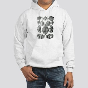 Shell Fossils Hooded Sweatshirt