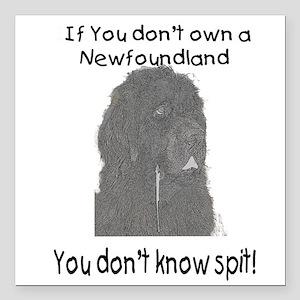 Newfoundland You Dont Know Spit Square Car Magnet