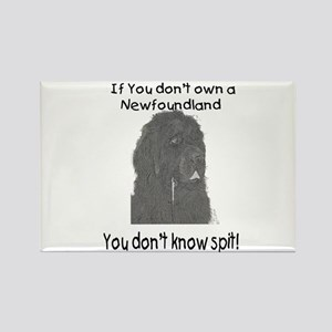Newfoundland You Dont Know Spit Rectangle Magnet