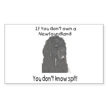 Newfoundland You Dont Know Spit Sticker (Rectangle