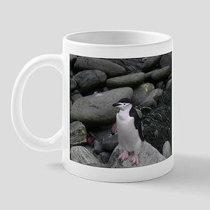 Chinstrap Penguin Mug