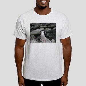 Chinstrap Penguin Ash Grey T-Shirt