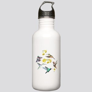 HUMMINGBIRDS AND TRUMPET PLANT Stainless Water Bot