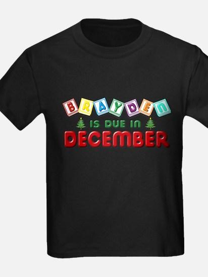 Brayden is Due in December.png T