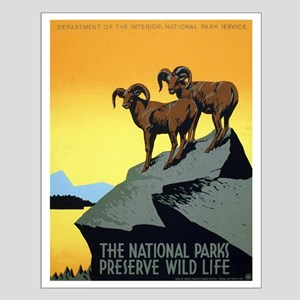National Parks: Preserve Wild Life Small Poster