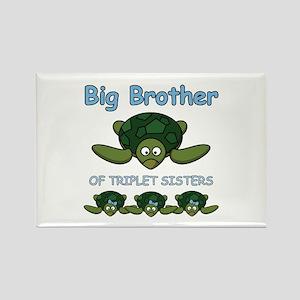 Big Bro Triplet Turtle Rectangle Magnet