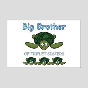 Big Bro Triplet Turtle Mini Poster Print