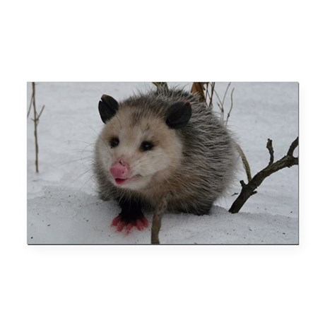 Snow Possum Rectangle Car Magnet