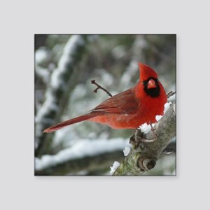 "Cardinal Winter Square Sticker 3"" x 3"""