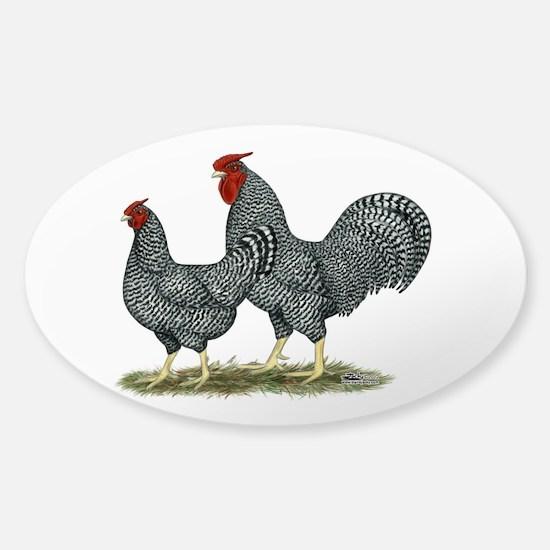 Dominique Chickens Sticker (Oval)