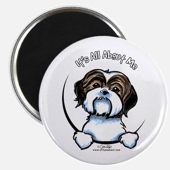 "Shih Tzu IAAM 2.25"" Magnet (10 pack)"