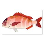 Red Porgy Sticker (Rectangle 50 pk)