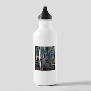 Bull Elk in forest Stainless Water Bottle 1.0L