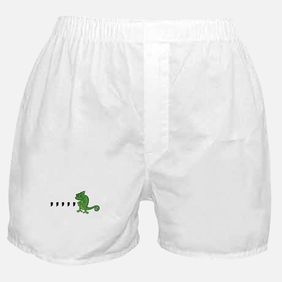 Comma Chameleon Boxer Shorts