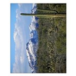 Snow in the Superstition Wilderness Small Poster