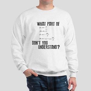 Maxwells Equation Sweatshirt