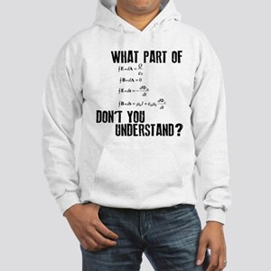 Maxwells Equation Hooded Sweatshirt