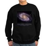 Everything is Conscious Quote Sweatshirt (dark)