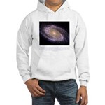 Everything is Conscious Quote Hooded Sweatshirt