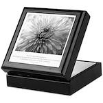 Reflection Creation Quote Keepsake Box