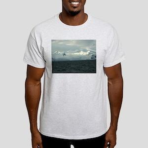 Antarctica Sunset 2 Ash Grey T-Shirt