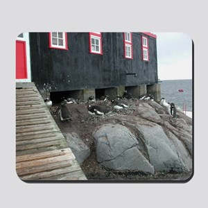 Port Lockroy Mousepad