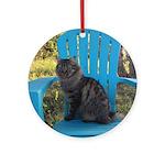 adirondack cat Round Ornament