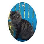 adirondack cat Oval Ornament