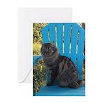 adirondack cat Greeting Cards