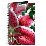 Pink Lily Journal