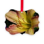 Day Lily Picture Ornament