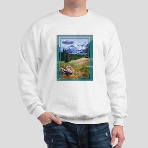 Picnic at Estes Park Sweatshirt