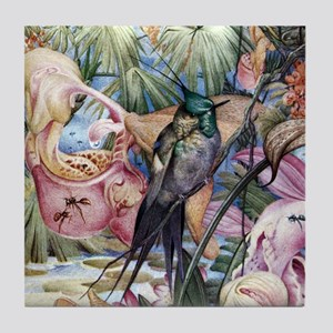 Edward Julius Detmold Tropical Birds Tile Coaster
