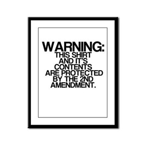 Warning, Protected By 2nd Amendment Framed Panel P