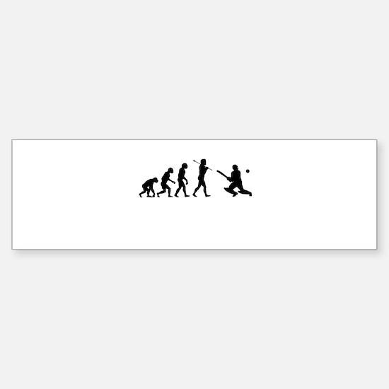 Cricket Evolution Sticker (Bumper)