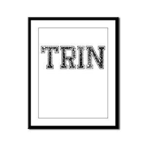 TRIN, Vintage Framed Panel Print