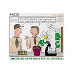Plant Study Throw Blanket
