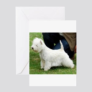 west highland white terrier full second Greeting C