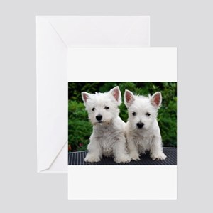 west highland white terrier puppy group Greeting C