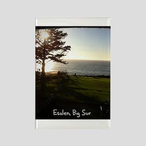 Front lawn at Esalen, Big Sur Rectangle Magnet